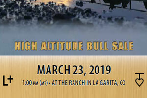T-Heart Ranch High Altitude Cattle | High Altitude Bull Sale March 23, 2019 at 1:00PM at the ranch in La Garita, Colorado